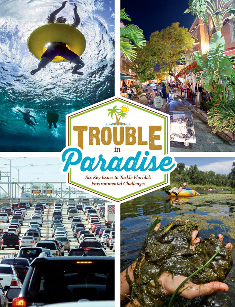 Trouble in Paradise Newsletter